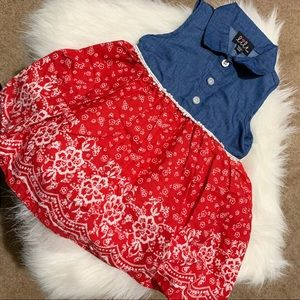 Toddler Denim and Red Floral Print Dress 12M